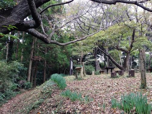 IMG_0095うばのふところ広場.JPG
